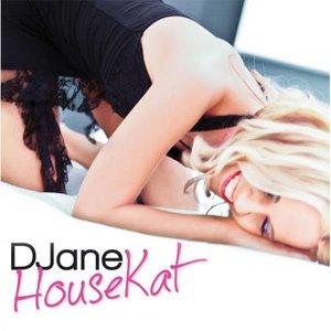Image pour 'DJane HouseKat feat. Rameez'