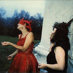 Image for 'Iva Bittová & Dorothea Kellerová'