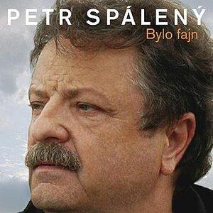 Image for 'Bylo fajn (20 originálních hitů 1969-2008)'