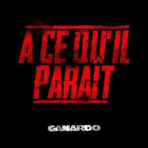 Image for 'A Ce Qu'il Paraît'