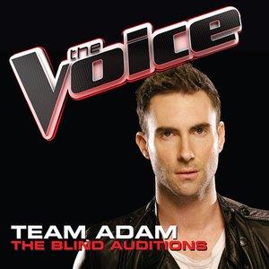Immagine per 'Team Adam: The Blind Auditions'