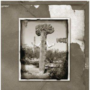 Image for 'Awakensong'