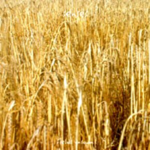 Image for 'Fields Unsown'