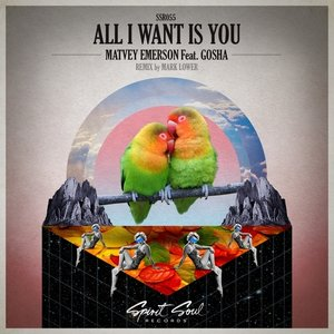 Image pour 'All I Want Is You'