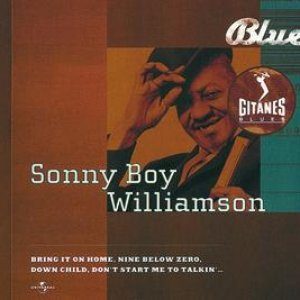 Bild für 'Gitanes Blues'