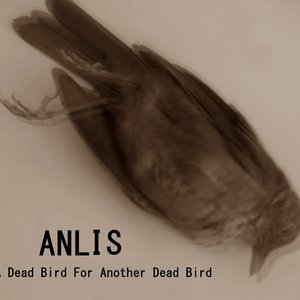 Image for 'A Dead Bird for Another Dead Bird'