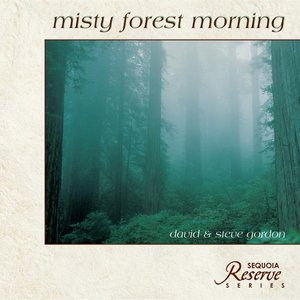 Image for 'Misty Forest Morning'