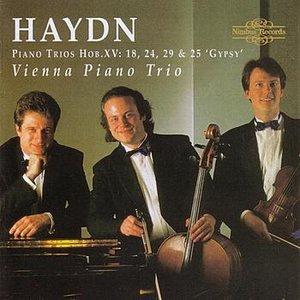 Image for 'Haydn: Piano Trios Hob.XV - 18, 24, 29 & 25 'Gypsy''