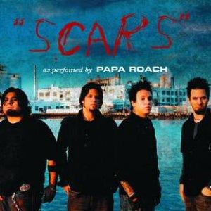 Bild für 'Scars (Acoustic Version)'