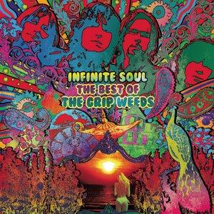 Bild für 'Infinite Soul: The Best Of The Grip Weeds'