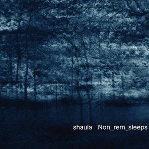 Image for 'Non_rem_sleeps'