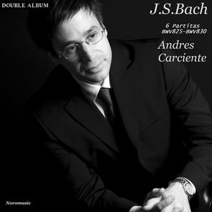 Image for 'J.S. Bach - 6 Partitas'