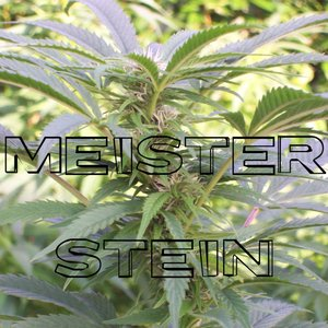 Image for 'Meister Stein in Remix'