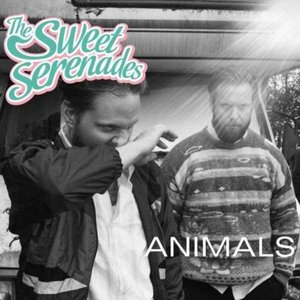 Image for 'Animals'