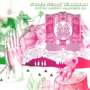 Image for 'Solid State Warrior'