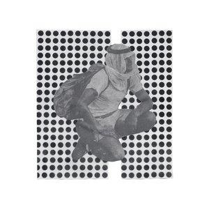 Image for 'The Album Paranoia'