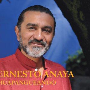 Image for 'Ernesto Anaya'