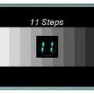 Image pour '11 STEPS'