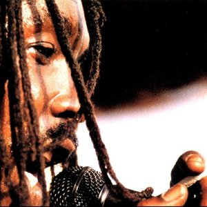 Immagine per 'Peter Tosh & The Wailers'
