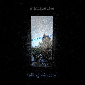 Image for 'Introspecter'