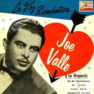 Image for 'Joe Valle'