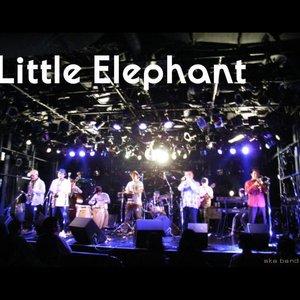 Immagine per 'The Little Elephant'