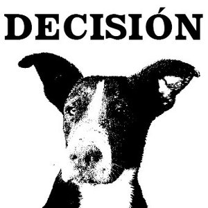 Image for 'Decision'
