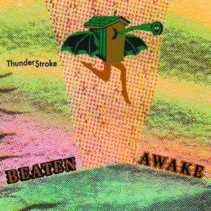 Image for 'Thunder$troke'