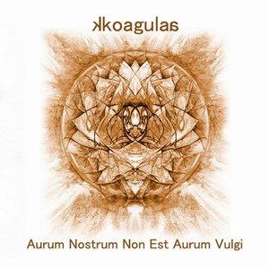 Immagine per 'aurum nostrum non est aurum vulgi'