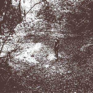 Imagem de 'Maiden Voyage'