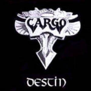 Image for 'Destin'