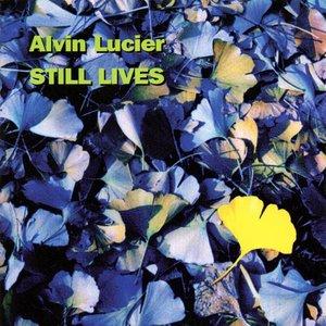 Image for 'Still Lives'