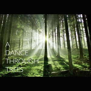 Image for 'A Dance Through Trees'