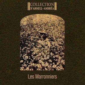 Imagem de 'Les marronniers'