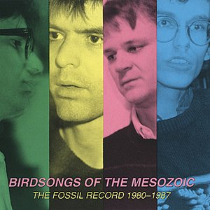 Image for 'The Fossil Record 1980-1987'