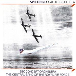 Image for 'Speedbird Salutes The Few'