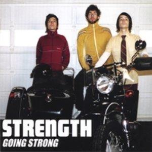 Bild für 'Strength'