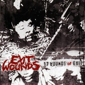 Image pour '17 Wounds of Exit'