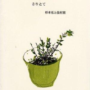 Imagem de 'saritote'