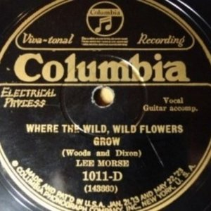 Image for 'I'd Love To Be In Love / Where The Wild, Wild Flowers Grow'
