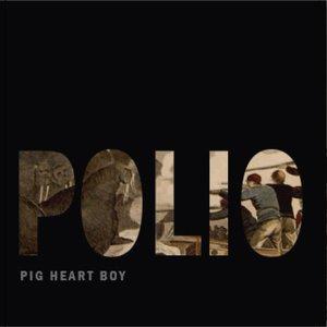 Image for 'Pig Heart Boy'