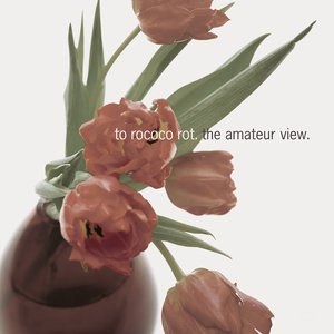 Image for 'The Amateur View'
