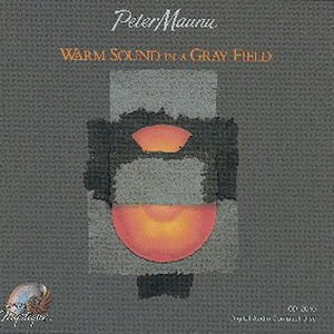 Image for 'Warm Sound In A Gray Field'