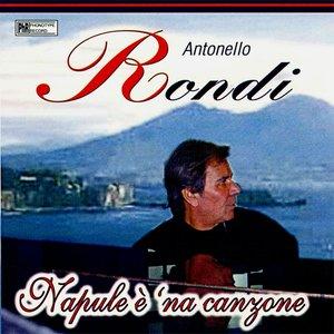 Image for 'Napule è 'na canzone'