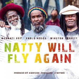 Image for 'Natty Will Dub Again (Dub Version)'