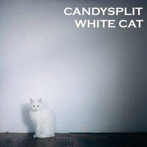 Image for 'White Cat'
