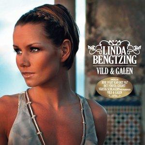 Image for 'Vild & galen'