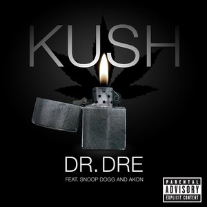 Image pour 'Kush (feat. Snoop Dogg & Akon) - Single'