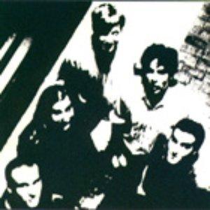 Image pour 'The Gone Boys'