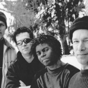 Image for 'Steve Kimock Band'